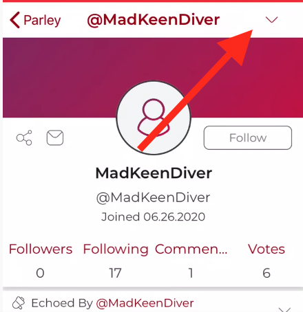 How to block on Parler app